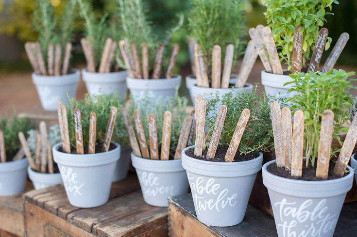 Potted herbs seating assignments by Taryn Eklund Ink | A Vintage Affair Events | Julie Harris Photography
